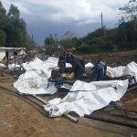 Adana'da şiddetli rüzgar hasara yol açtı