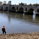 Köprü ayağındaki köpek, AFAD'ı harekete geçirdi