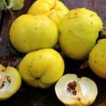 Ayvanın faydaları nelerdir? Ayva yaprağı çayı nasıl yapılır ve ne işe yarar?