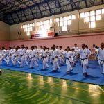 Erzurum'da karatecilere eğitim semineri