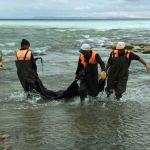 Van Gölü'ne sızan zift temizlendi