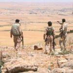 Teröristten 'YPG' itirafı! Her şeyi anlattı