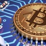 Alanlar bin pişman! Bitcoin şirketi iflas etti