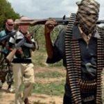Nijerya'da çatışma! 7 üst düzey örgüt üyesi öldürüldü