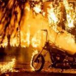 Tarihin en büyük yangını kontrol altına alındı