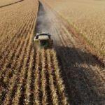 Tarımsal üretim ve ihracat desteklerle büyüyecek