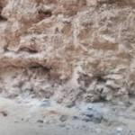 Mardin'de dinozor fosili bulundu!