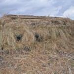 Kırklareli'nde kaçak avcılıkla mücadele