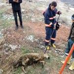 Fosseptik çukuruna düşen koyunu itfaiye kurtardı