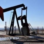 Petrolün varili 54,81 dolar