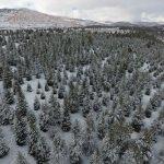 Burdur'da karla kaplı ormanlık alanlar havadan görüntülendi