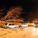 Bursa'da kuvvetli fırtına