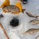 En tehlikeli balık avı!