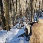 Amanoslar'da terör örgütüne ait 9 sığınak bulundu