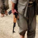 Şırnak'ta PKK operasyonu: 14 gözaltı