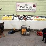 Tokat merkezli 3 ilde hayvan hırsızlığı operasyonu