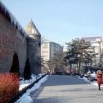 Doğu Anadolu'da dondurucu soğuk