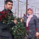 Güllerin içinde Sevgililer Günü kutlaması