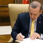 Erdoğan imzaladı! 3 atama bir görevden alma
