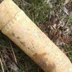 Uşak'ta orman işçileri buldu! Hemen imha edildi