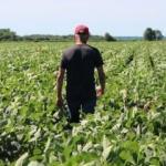 Çiftçilere uyarı: Geç kalmadan yaptırın