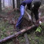 Genç kadın ormanda öyle bir şey yaptı ki...