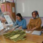 Bitlis'te 13 belediyenin 11'ini AK Parti kazandı