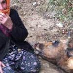 İneğine ağlayan Sabiha Nine'nin yüzünü Bakan güldürdü