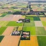 Bazı bölgeler için arazi toplulaştırma kararı