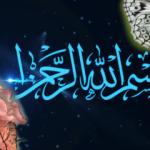 Allah'ın yaratma sanatı nedir? En ilginç hayvanlar ve çiçekler...