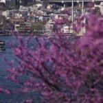 Meteoroloji gün verdi: Baharın ardı sağanak