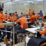Mahkumlar üretiyor 8 ülkeye satılıyor