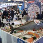 Avrupa'da üç balıktan biri Türkiye'den