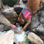 Mardin'de 40 kilogram patlayıcı ele geçirildi
