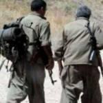 Şırnak'ta 2 PKK'lı terörist teslim oldu