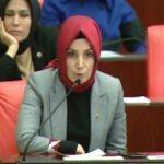 AK Partili vekil CHP'nin adayına adeta ders verdi!