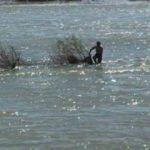 Baraj kapağı açıldı; suda mahsur kaldı