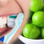 Yeşil eriğin faydaları nelerdir? Erik yedikten sonra dişlerinizi fırçalarsanız...