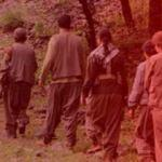 PKK'lı terörist itiraf etti: Çatışmada kadınlar...