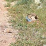 Malatya'da akraba kavgası: 1'i polis 2 kişi hayatını kaybetti