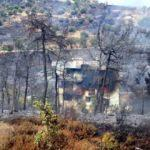 İzmir'de korkutan yangın! Karadan ve havadan müdahale