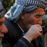 Kürtlere var olan tüm hakları AK Parti döneminde verildi
