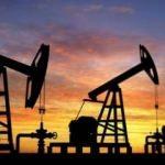 OPEC'ten önemli petrol tahmini!