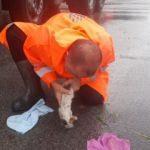 Pendik'te boğulan yavru kediyi suni solunumla hayata döndürdü