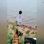 Dereye düşmek üzere olan kızı kurtaran kahraman köpek!