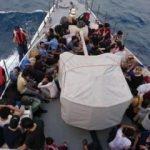 Muğla'da, 114 kaçak göçmen yakalandı