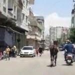 Yer: Gaziantep... İç sızlatan görüntü
