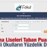 Adana Liseleri taban puanları 2019 nitelikli okullar yüzdelik dilimleri MEB