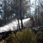 Alanya'da orman yangını; 5 dönüm alan kül oldu