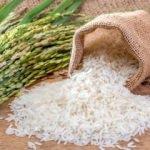 Baldo pirinç nedir? Baldo pirinç özellikleri nelerdir? 2020 baldo pirinç fiyatları